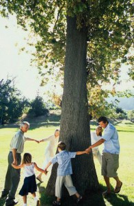 Playful Family Circling Tree